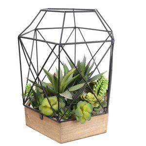 Artificial Mix Succulent Geometric Terrarium Cage